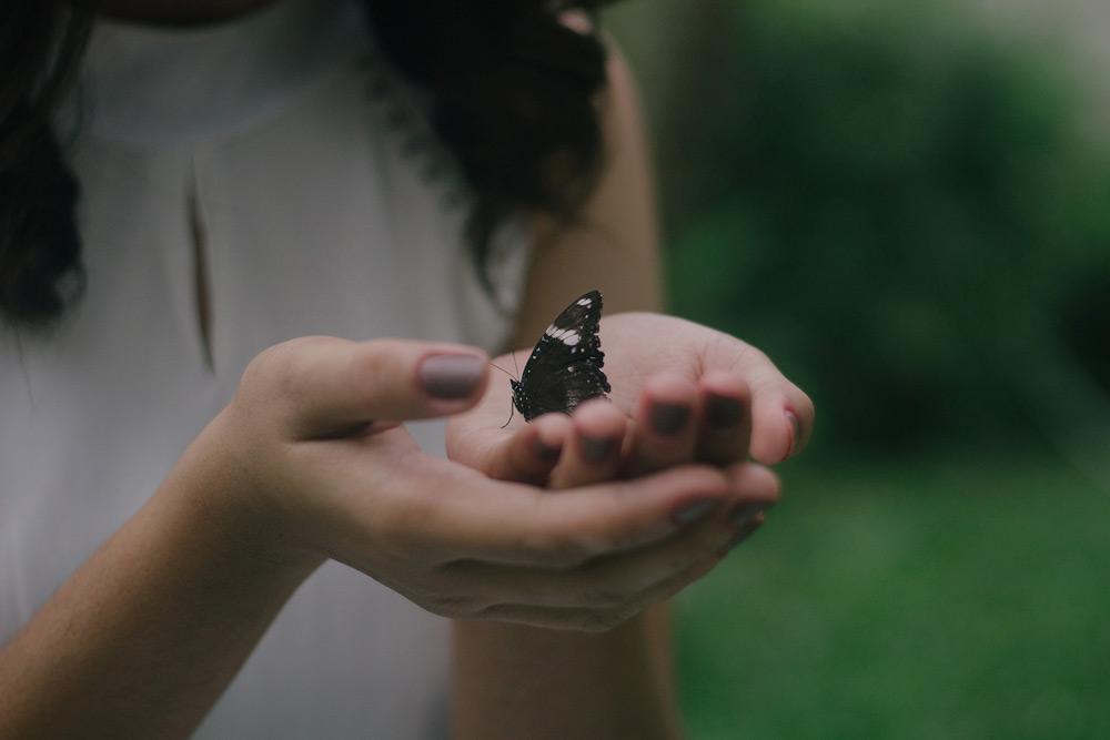una farfalla tra le mani